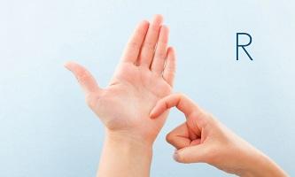 British Sign Language (BSL) at QLS Level 1 & 2