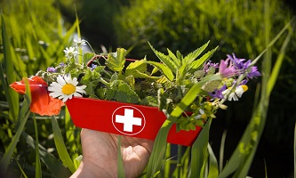 First Aid For Holistic Therapists