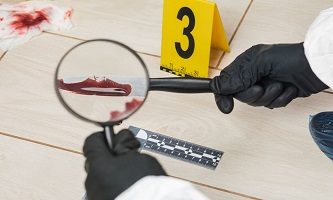 Forensic Psychology and Criminology Course at QLS Level 3